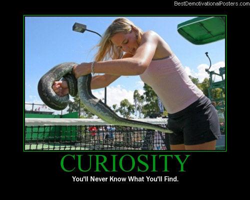 Being curios