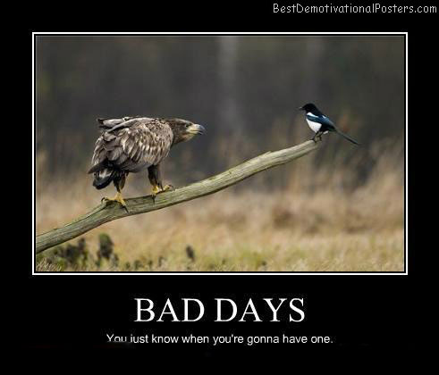 Bad-Days-Best-Demotivational-Poster