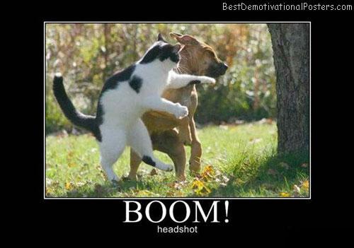 Boom – Headshot