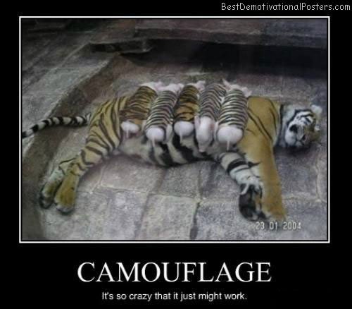 Camouflage-Demotivational-Poster