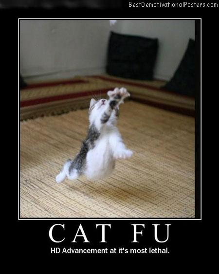 Cat-Fu-Best-Demotivational-Poster