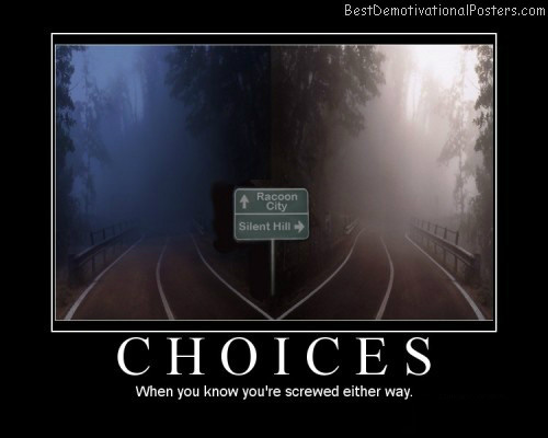 Choices-Demotivational-Poster
