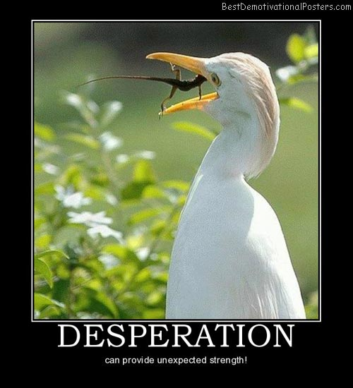 Desperation-Demotivational-Poster