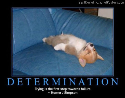 Determination-Demotivational-Poster
