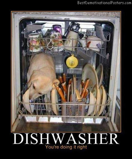 Dishwasher-Demotivational-Poster