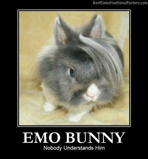 EMO-Bunny-Demotivational-Poster
