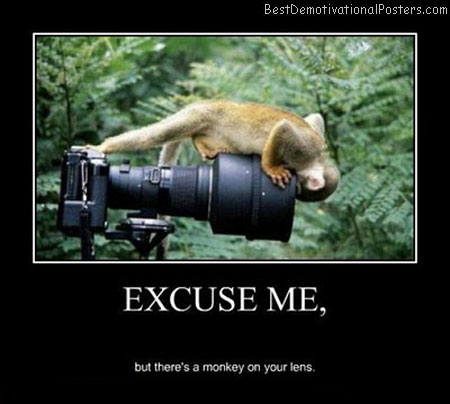 Excuse-Me-Demotivational-Poster