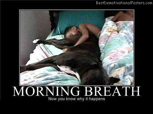 Morning-Breath-Demotivational-Poster
