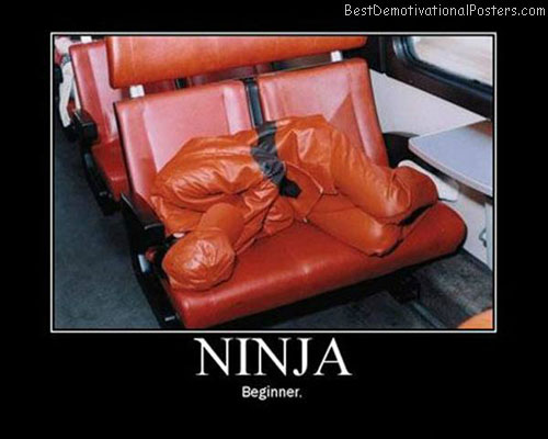 Ninja-Demotivational-Poster