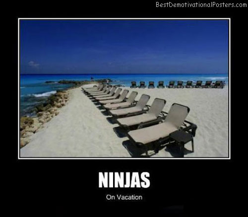 Ninjas-Demotivational-Poster