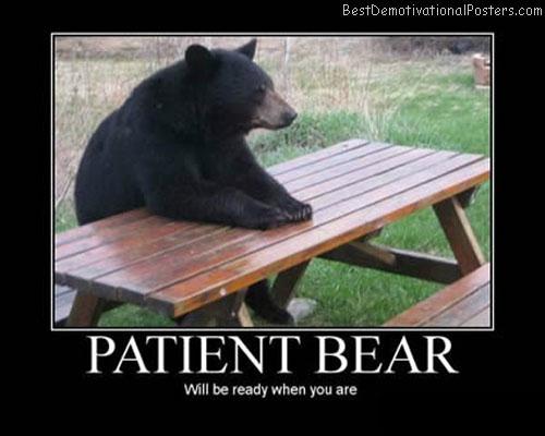 Patient-Bear-Best-Demotivational-Poster