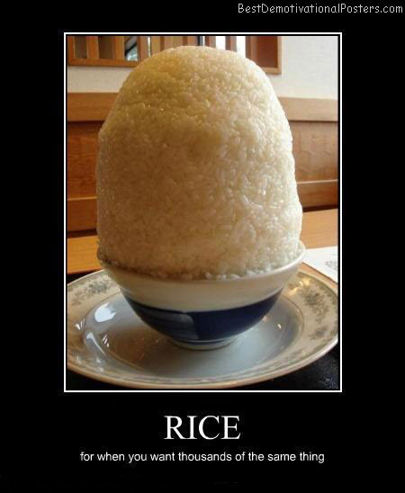 Rice-Best-Demotivational-poster