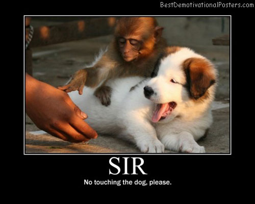 SIR-Best-Demotivational-poster