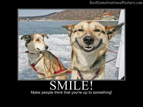 Smile-Dog-Demotivational-Poster