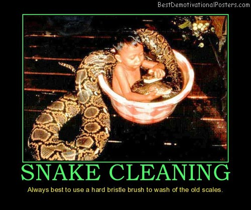 Snake Cleaning
