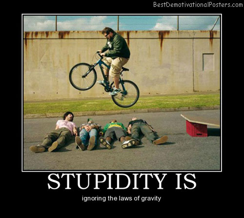 Stupidity-Is-Best-Demotivational-Poster