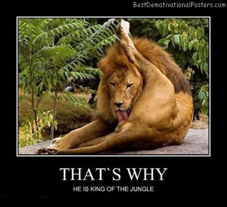 That's-Why-Demotivational-Poster