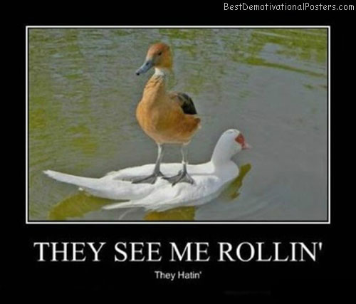They-See-Me-Rollin'-Demotivational-Poster