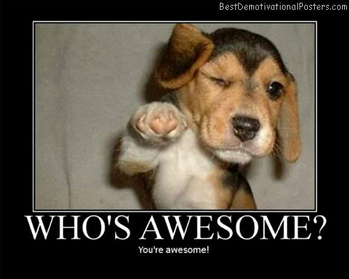 You're-Awesome-Best-Demotivational-Poster