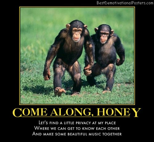 come-along-honey-monkeys-privacy-love-demotivational-poster