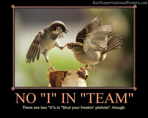 no-i-in-team-as-family-friendly-as-i-can-make-it-demotivational-poster