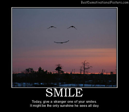 smile-smiles-sunset-smiley-birds-demotivational-poster