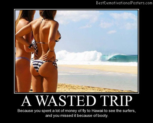 A-Wasted-Trip-Best-Demotivational-Poster
