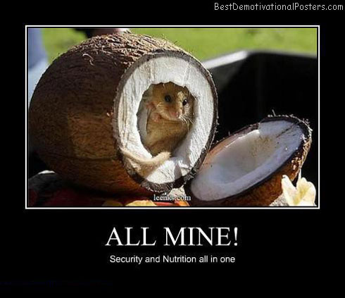 All-mine-Best-Demotivational-poster
