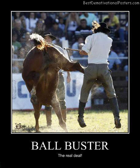 Ball-buster-Best-Demotivational-poster