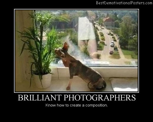 Brilliant-photographers-Best-Demotivational-poster