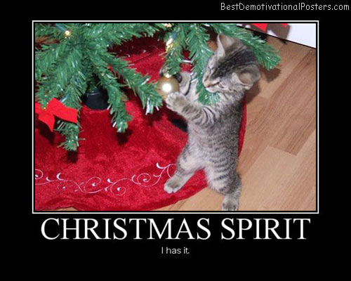 Christmas-Spirit-Best-Demotivational-Poster