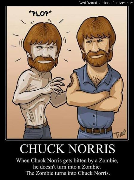 Chuck-Norris-Best-Demotivational-poster