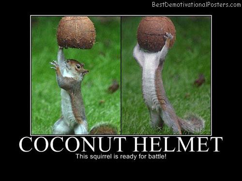 Coconut-helmet-Best-Demotivational-poster