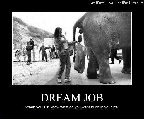 Dream-job-Best-Demotivational-poster