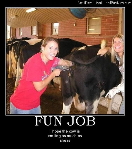 Fun-Job-Best-Demotivational-poster