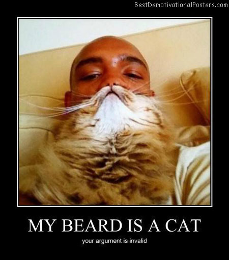 My Beard Is A Cat