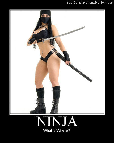 Ninja-Girl-Best-Demotivational-poster
