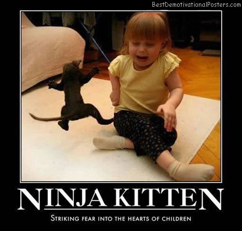 Ninja-kitten-Best-Demotivational-poster