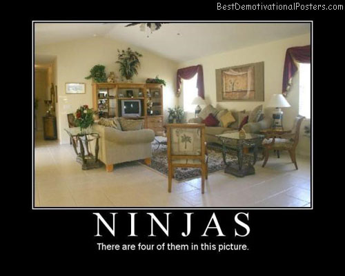 Ninjas-Best-Demotivational-poster