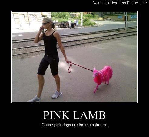 Pink-lamb-Best-Demotivational-poster