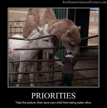 Priorities-Best-Demotivational-poster