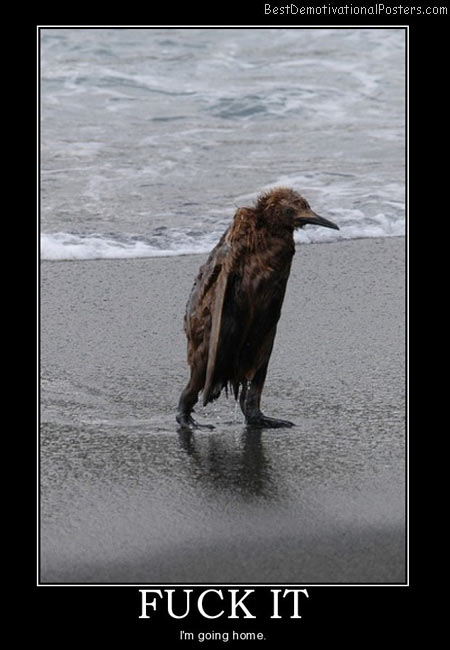 Sad-animal-Best-Demotivational-poster