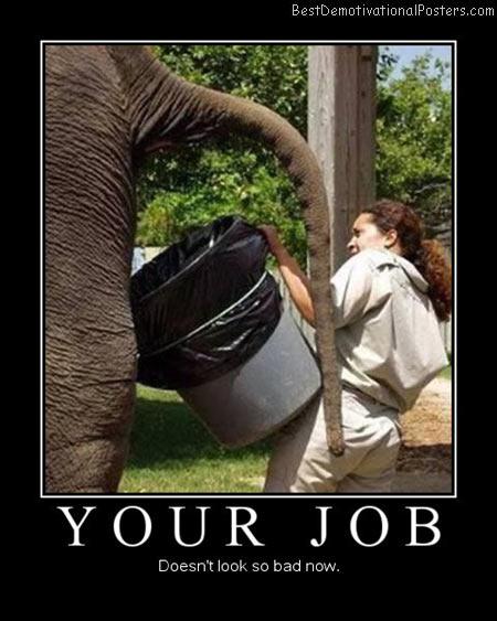 Your-Job-Best-Demotivational-Poster