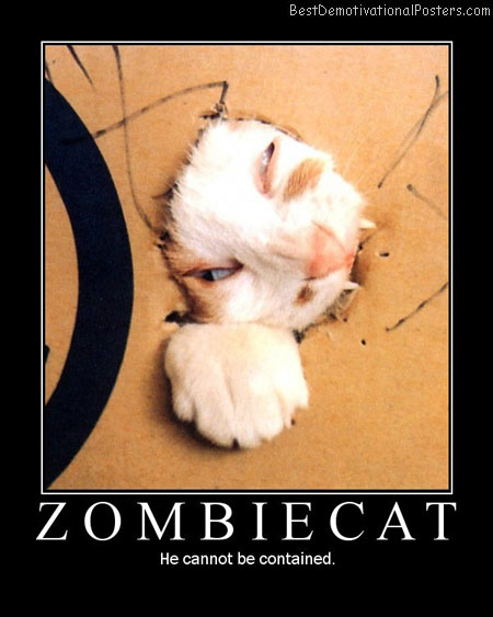 Zombie cat-Best-Demotivational-poster