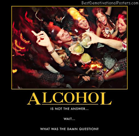 alcohol-drunk-party-answer-question-best-demotivational-posters