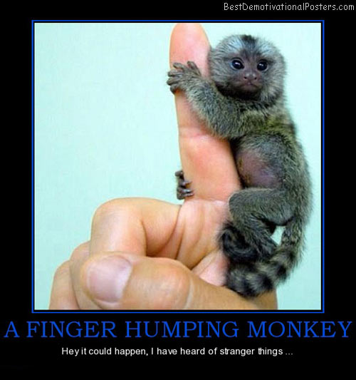 A Finger Humping Monkey