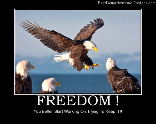freedom-best-demotivational-posters
