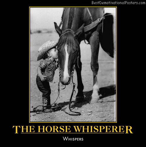 horse-whisperer-whispers-humor-best-demotivational-posters
