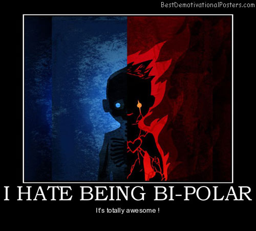 i-hate-being-bi-polar-bipolar-hate-its-totally-awesome-best-demotivational-posters