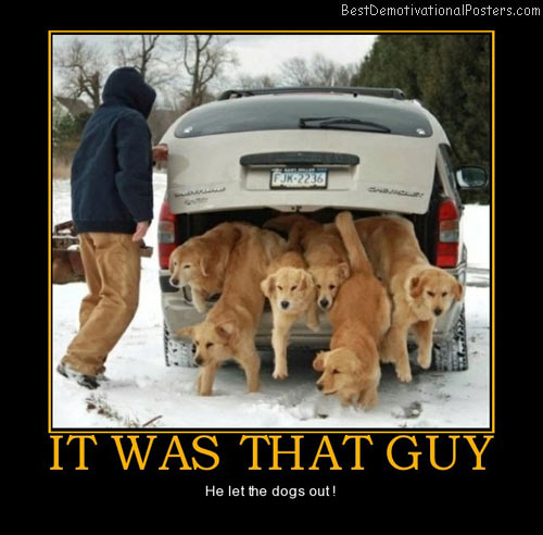 It was that guy that guy let dogs out best demotivational posters